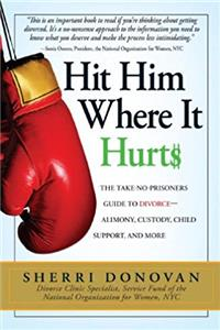 eBook Hit Him Where It Hurts: The Take-No-Prisoners Guide to Divorce-Alimony, Custody, Child Support, and More ePub