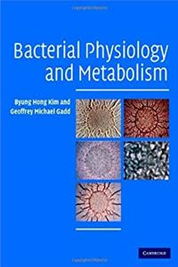 eBook Bacterial Physiology and Metabolism ePub