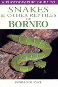eBook Photographic Guide to Snakes and Other Reptiles of Borneo ePub