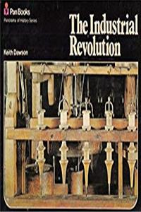 eBook Industrial Revolution (Panorama of History) ePub