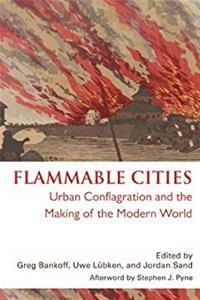 eBook Flammable Cities: Urban Conflagration and the Making of the Modern World ePub