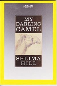 eBook My Darling Camel ePub